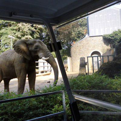 ausflug_zoo_3_web